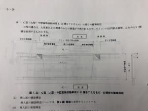 IMG_E3696[1]