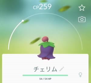 IMG_E0667