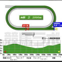 第57回函館記念予想