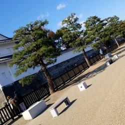 京都散策。