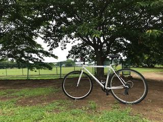 週末Runがジョグになって自転車もやりだした
